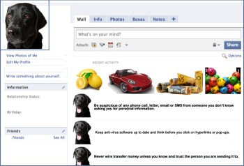 "Jet's face book page, with a typical Facebook layout: a picture of Jet in the top corner a banner of images under the ""what's on your mind"" box  3 lemons, a red car, rolled up $50 notes and colourful lotto balls with wall posts that mirror the 5 golden scam avoidance rules."