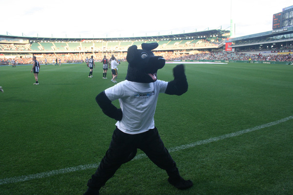 Jet warms up as the football match gets going