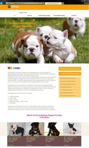 bulldog breeder website