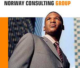 A screen shot of the Norway consulting group scam website