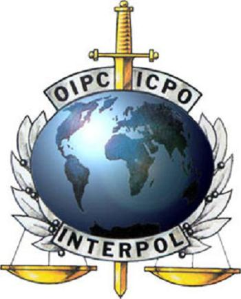 the Interpol logo